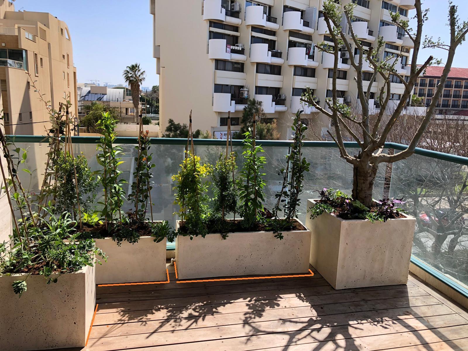 שלבי הקמת הגינה במרפסת